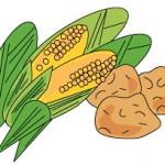 「コンサ・土・農園」で収穫祭を実施
