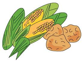 「コンサ・土・農園」収穫のトウモロコシを9/9にさっぽろ東急百貨店にてチャリティー募金でプレゼント