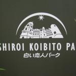 第24回YOSAKOIソーラン祭り開幕
